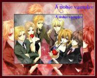لمحبي الانمي vampire knight فقط ريما تويا شيكي سينري وغيرهم
